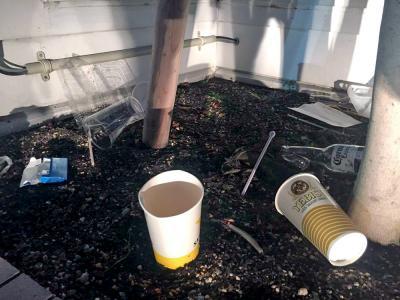 植え込みなど人目につきにくい箇所には今年もゴミが目立った