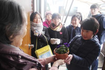 貞山小5年生 地元のお年寄り宅訪問 パンジーと年賀状をプレゼント お元気で長生きしてね