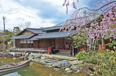桜の映える新緑の庭園にしっとりと...