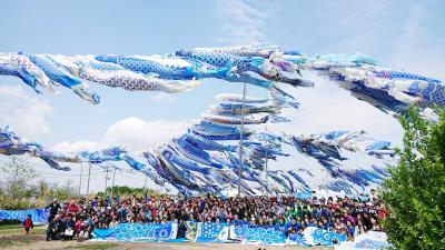 【しんちゃん通信】Vol.80 青い鯉のぼりの秘密