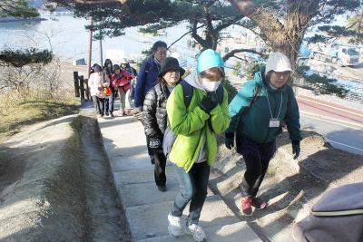 景観豊かな奥松島を楽しむ参加者たち