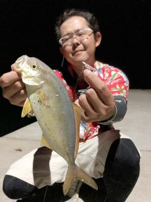 回遊していた30センチ未満の若魚を...