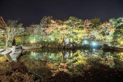石巻市新橋・森芳春荘 12―14日に夜間開放 日本庭園 晩秋の装い